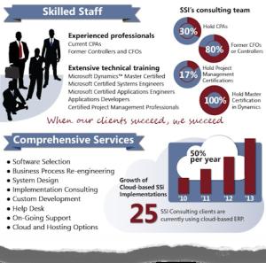 Infographic Resume Example
