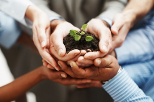 The Partner Marketing Group Cultivation Station Blog