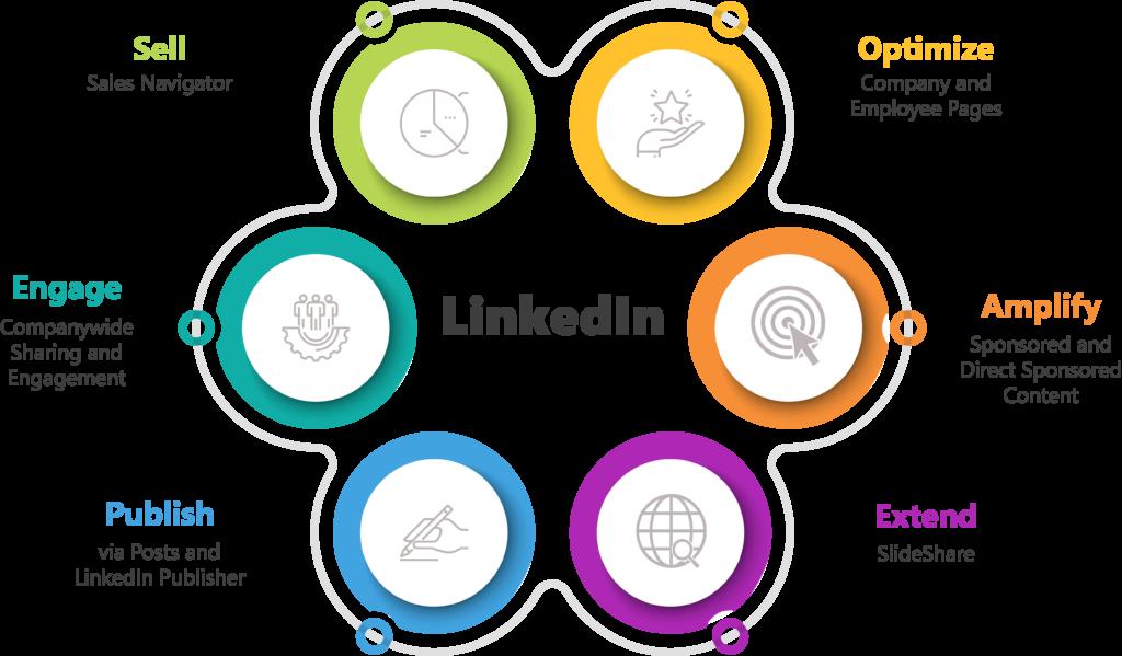 TPMG-LinkedIn 360
